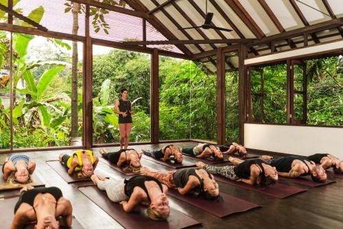 Join the Best Yoga Teacher Training for Beginners